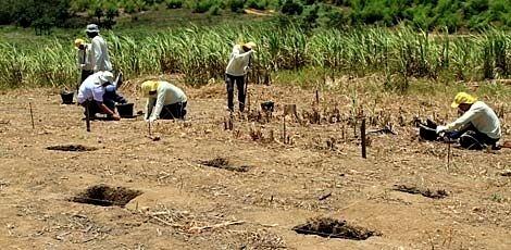 14.out.2015 - Arqueólogos da UFPE descobrem sítio pré-histórico em Araçoiaba