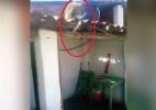 Macaco bebe demais e ameaça clientes de bar com peixeira (Foto: Reprodução/Portal Correio)