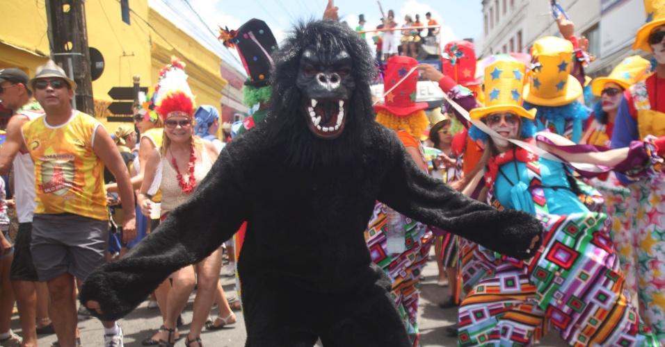 9.fev.2013 - Folião fantasiado de Gorila chama atenção no bloco O Galo da Madrugada em Recife