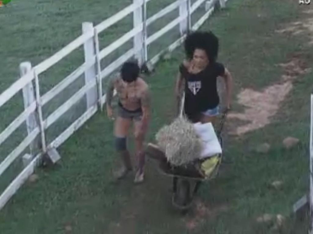 Simone Sampaio e Penélope Nova carregam feno pela fazenda (4/6/12)