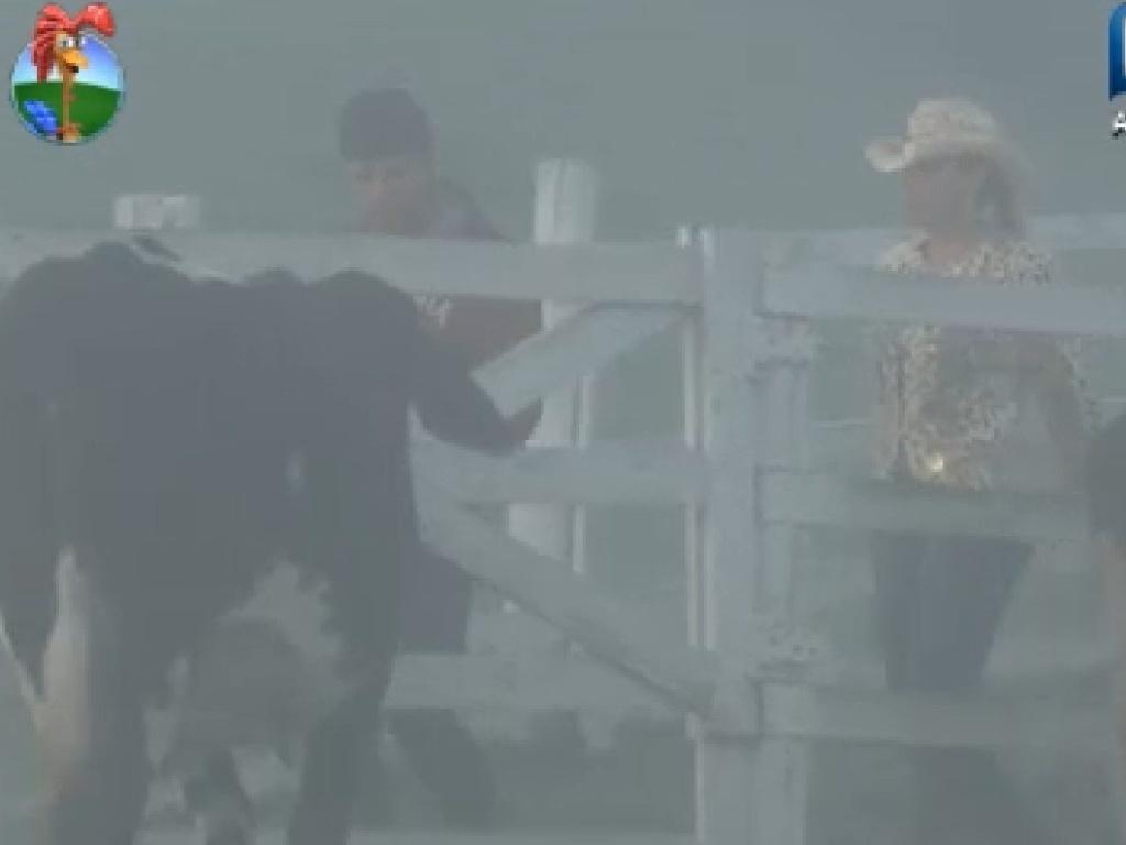 Em meio a forte neblina, peões começam a cumprir tarefas na manhã desta sexta-feira (13)