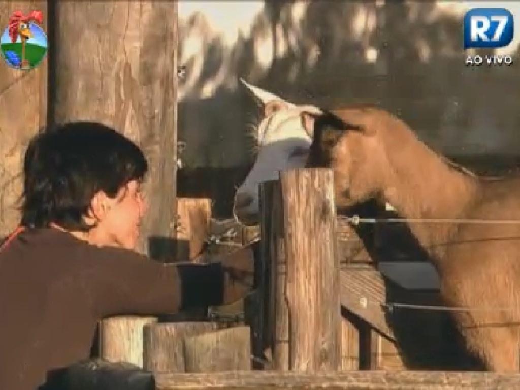 Penélope Nova acaricia as cabras no fim da tarde (20/7/12)