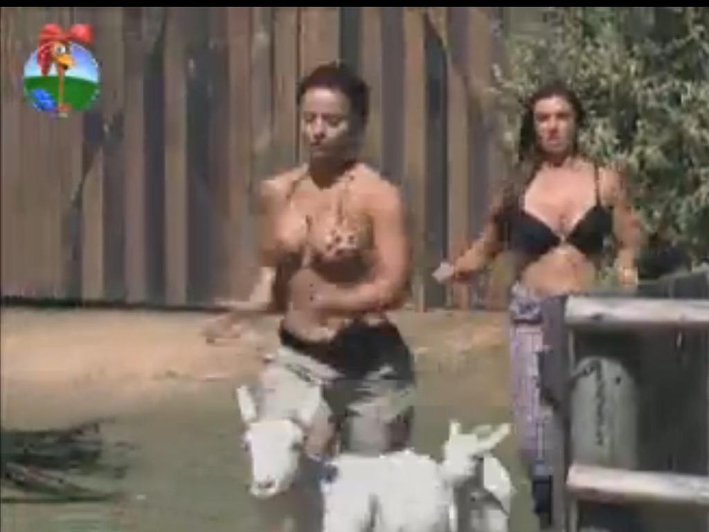 Viviane Araújo e Nicole Bahls trabalham juntas para resgatar cabras (14/8/12)