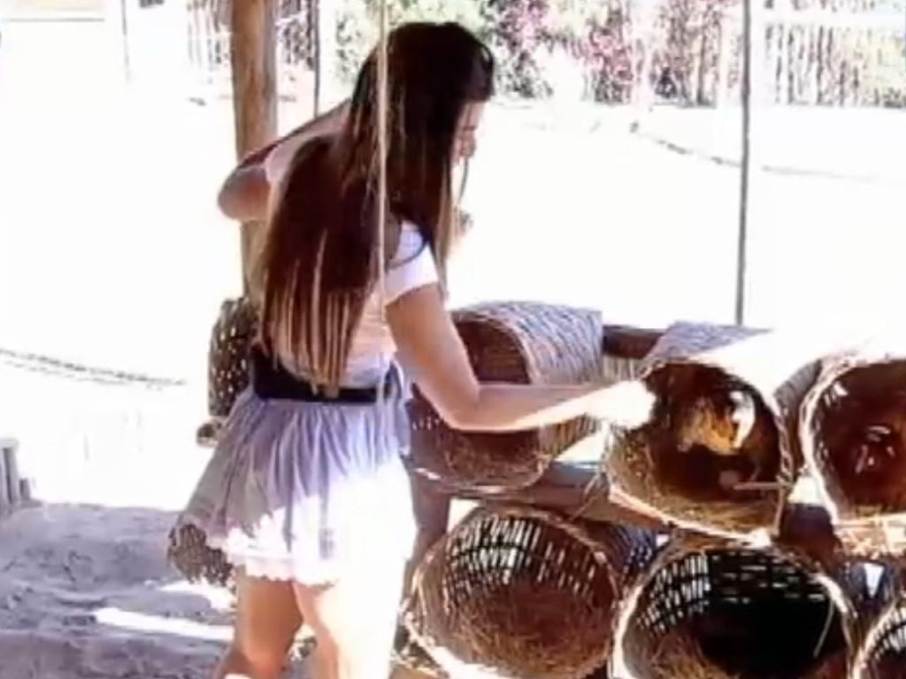 Nicole Bahls recolhe ovos na manhã desta quarta-feira (15/8/12)