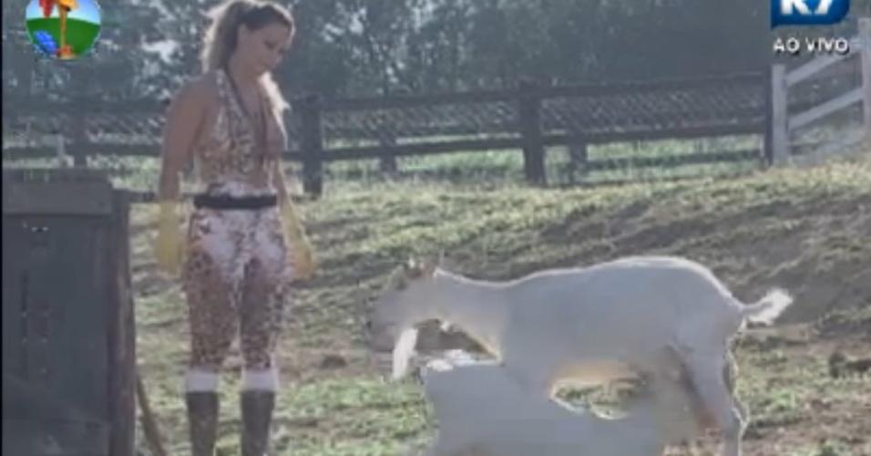 Viviane Araújo observa as cabras na manhã desta terça-feira (21/8/12)