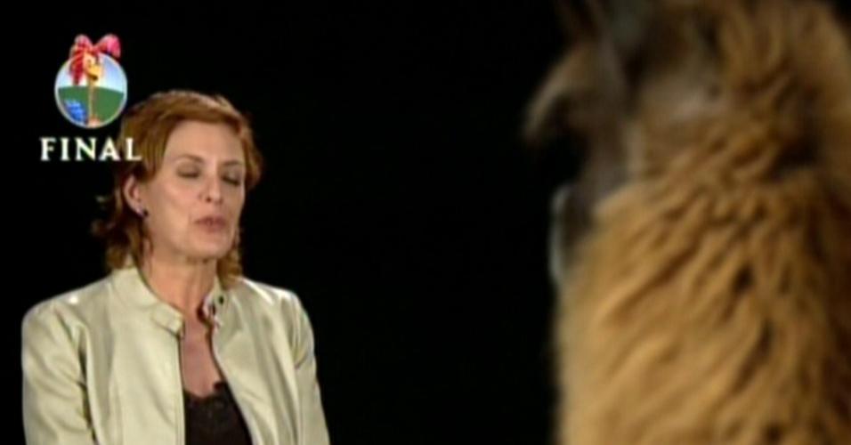 """Na final de """"A Fazenda 5"""", a Record preparou uma """"entrevista especial"""" da lhama Consuelo, feita por Chris Couto (29/8/12)"""