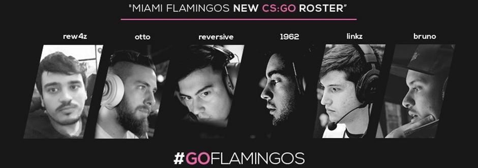 Miami Flamingos revela sua nova lineup sul-americana de CS:GO