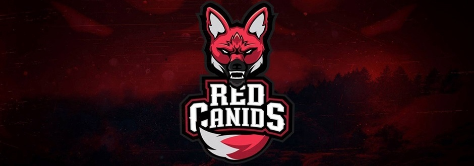 Red Canids vence CNB no CBLOL 2017