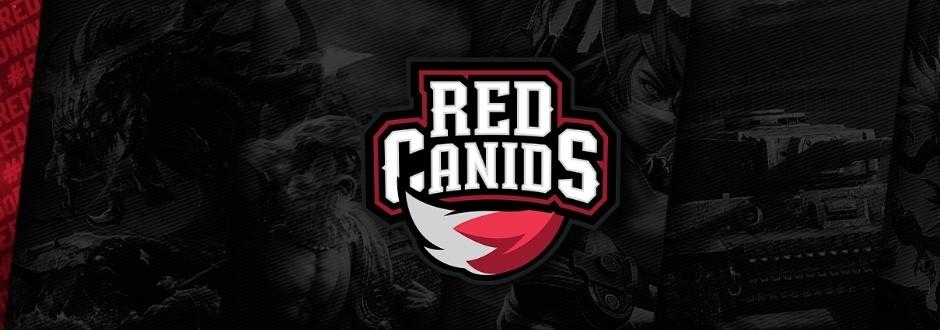 Resultado de imagem para red canids e corinthians