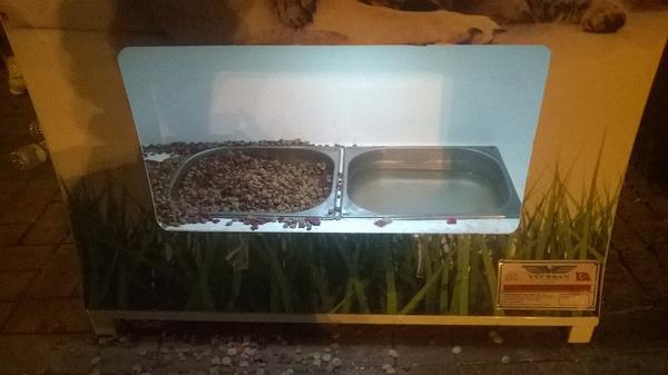 Detalhe mostra os pratinhos com ração e água para os bichos