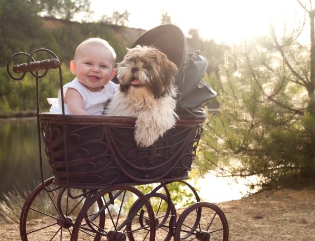 Pesquisadores apontam que o mesmo sentimento de amor que une pais e filhos também se estende a pessoas e seus cães, devido à ocitocina